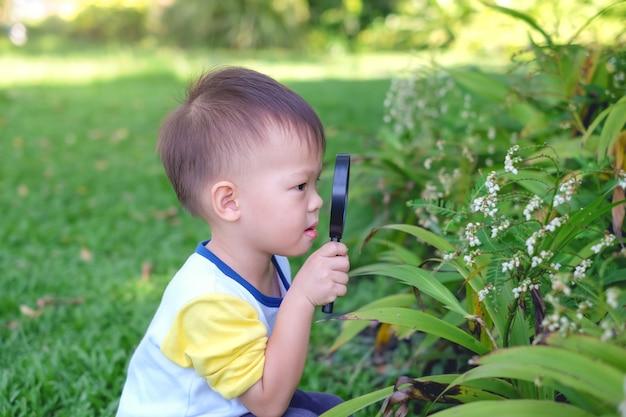 Asiático 2-3 anos de idade criança menino garoto explorar o ambiente, olhando através de uma lupa em dia ensolarado