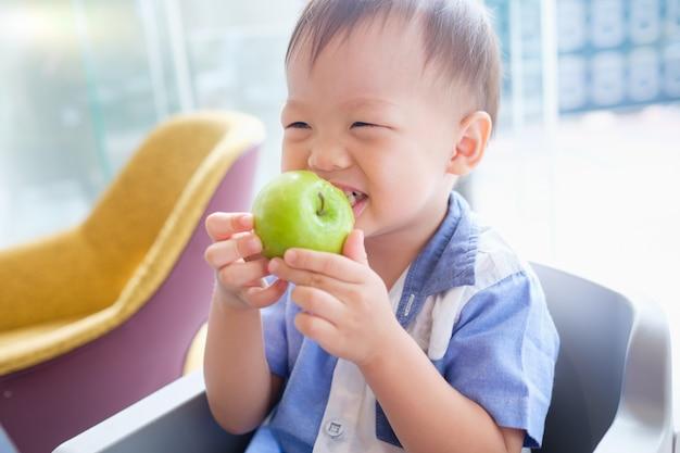 Asiático pequeno bonito 30 meses / 2 anos de idade criança bebê menino criança sentada na cadeira alta, segurando, mordendo, comendo uma maçã verde inteira com casca como café da manhã no restaurante, boa comida para o conceito de crianças