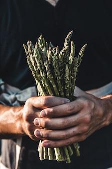 Aspargos verdes mantidos nas mãos dos homens