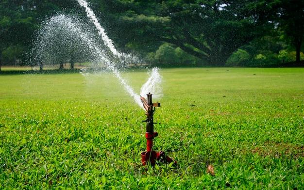 Aspersão de água no parque