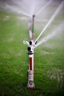 Aspersão irrigação do campo