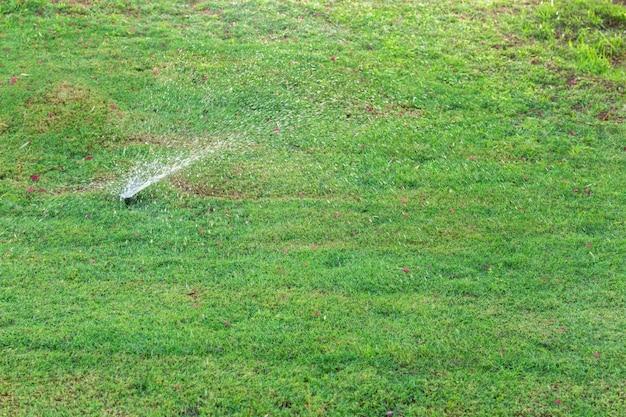 Aspersor no jardim regar o gramado. conceito de gramados de rega automática