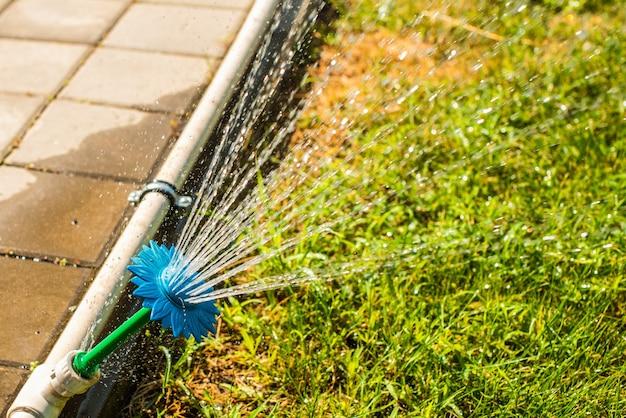 Aspersores automáticos para regar a relva, em forma de flor. o gramado é regado