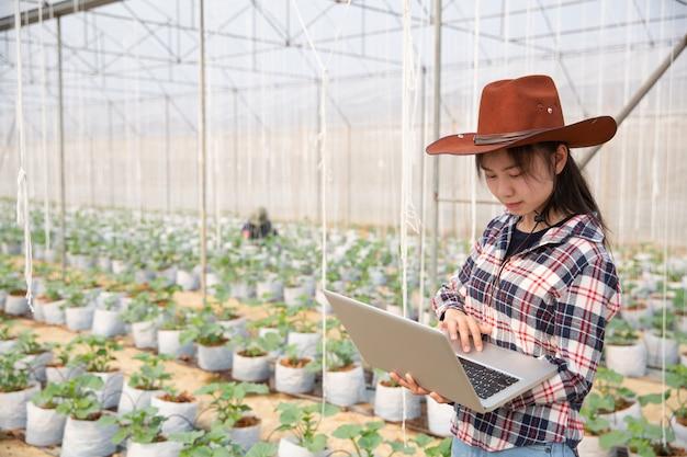 Assistente de ciência da mulher, oficial agrícola. em estufa pesquisa melão