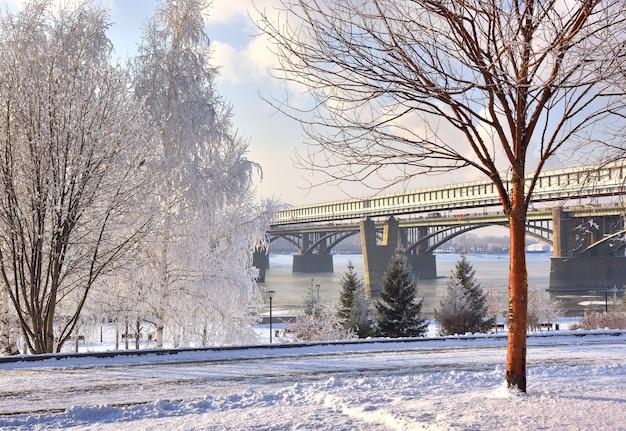 Aterro de michaels no inverno ponte oktyabrsky sobre as árvores de vidoeiro do rio ob na neve