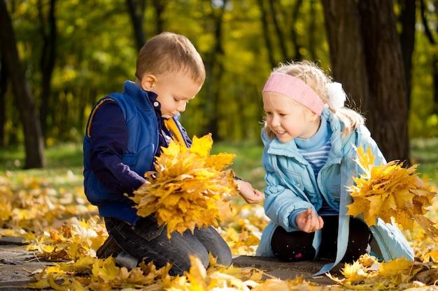 Atraente irmão e irmã mais novos na floresta de outono ajoelhados entre as coloridas folhas amarelas caídas
