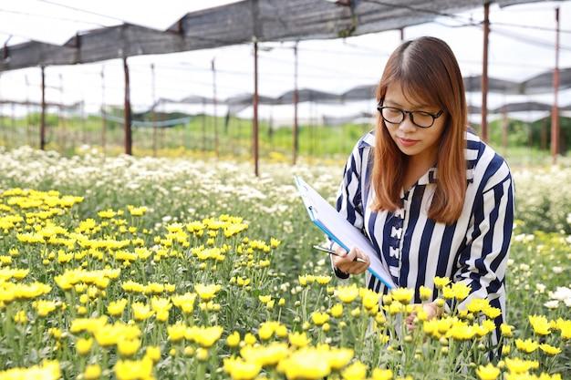 Atraente mulher asiática tomando nota de fazenda de flores de crisântemo agrícola