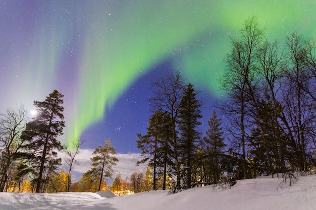 Aurora boreal sobre uma floresta com iluminação artificial