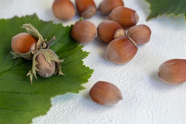 Avelãs sobre um fundo claro com folhas verdes. contém vitaminas e minerais benéficos.