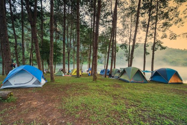 Aventuras acampando e acampando pela manhã com nevoeiro leve em pang-ung, mae hong son, tailândia