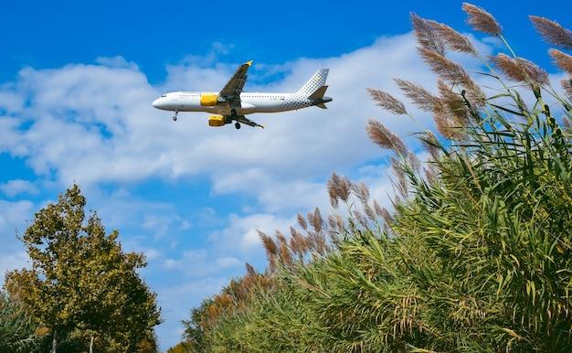Avião pousando entre a natureza
