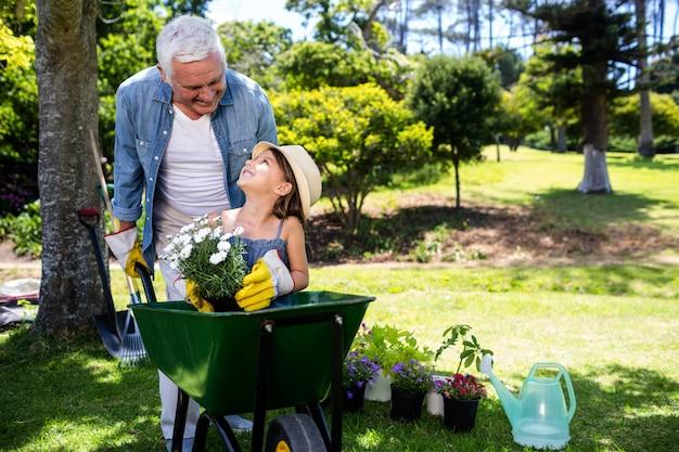 Avô carregando sua neta em um carrinho de mão