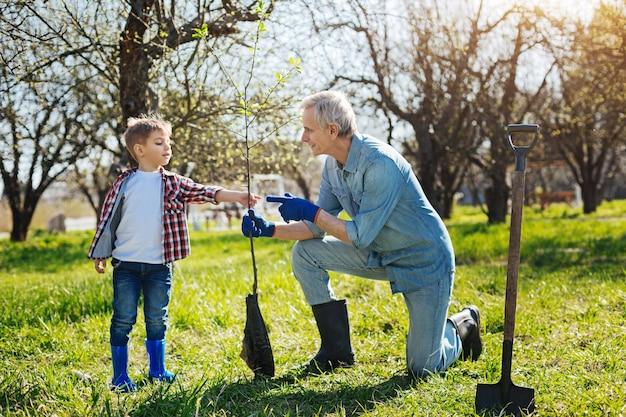 Avô e uma criança curtindo o processo de jardinagem e plantando uma nova árvore frutífera em um dia ensolarado de primavera
