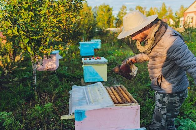 Avô experiente apicultor ensina seu neto a cuidar de abelhas. apicultura. o conceito de transferência de experiência.