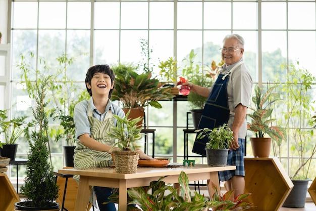 Avô jardinagem e neto ensinando a cuidar de plantas dentro de casa