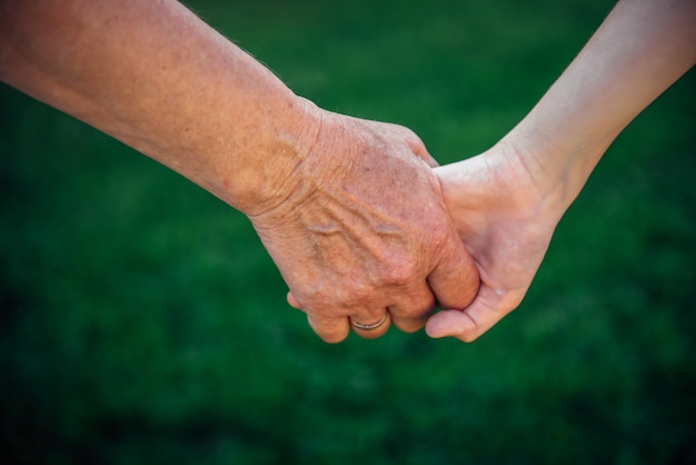 Avó, segurando o neto mão na natureza. dia nacional dos avós, conceito de família. duas gerações. a mão da velha e da criança