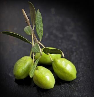Azeite e ramo de oliveira no fundo preto