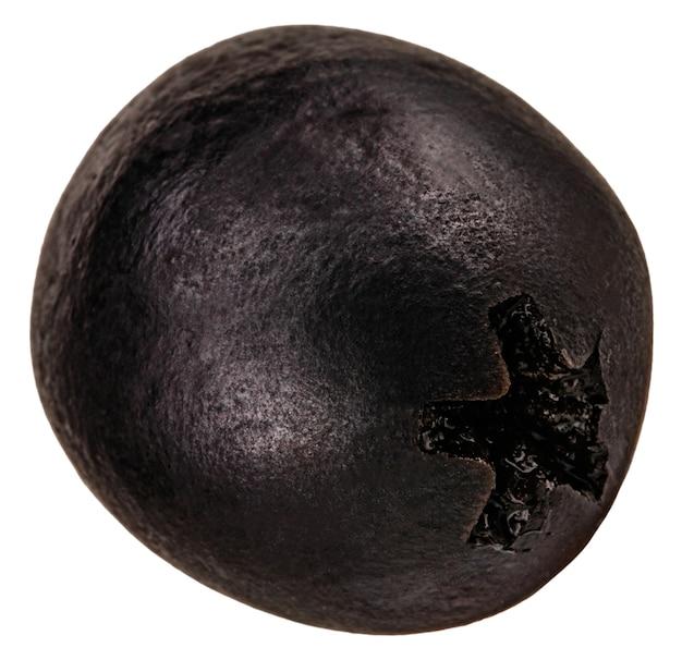 Azeitona preta isolada em um branco
