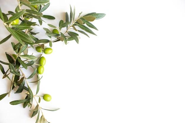 Azeitonas verdes orgânicas frescas na placa branca