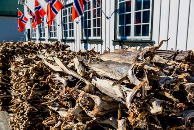 Bacalhau, seco por ar frio e vento no porto de pesca noruega
