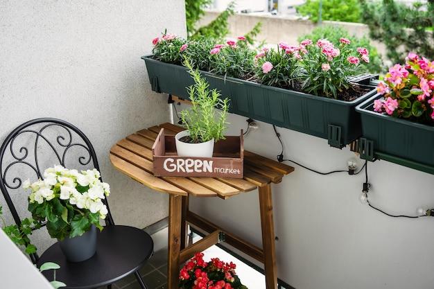 Baclony verde caseiro no horário de verão. jardinagem de passatempo. conceito de redução de estresse