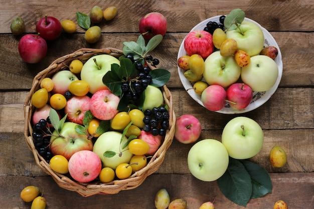 Bagas de jardim da vila e frutas: maçãs de diferentes variedades, ameixas, rowan na cesta.