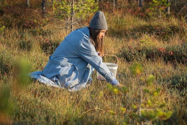 Bagas de outono colhendo jovem no pântano em busca de cranberry maduro passam o fim de semana fora da cidade