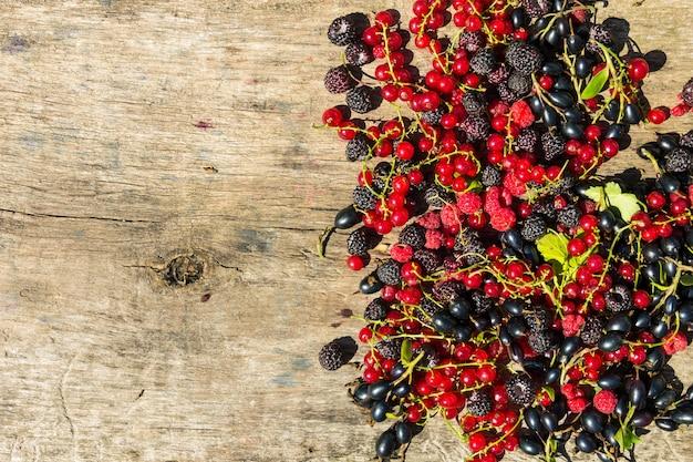 Bagas frescas coloridas em fundo de madeira. amoras, framboesas, groselha vermelha e preta na mesa. conceito de alimentação e dieta saudável. vista superior com espaço de cópia