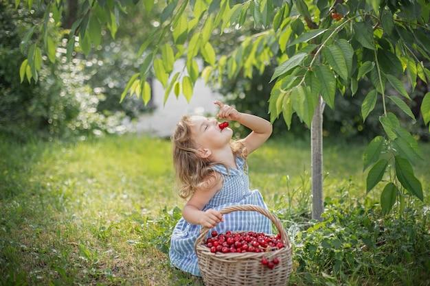 Bagas maduras e doces de verão no pomar