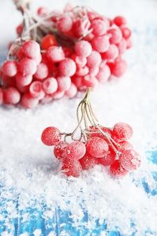 Bagas vermelhas de viburnum com cristais de gelo, sobre fundo azul