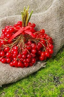 Bagas vermelhas de viburnum em fundo de grama verde
