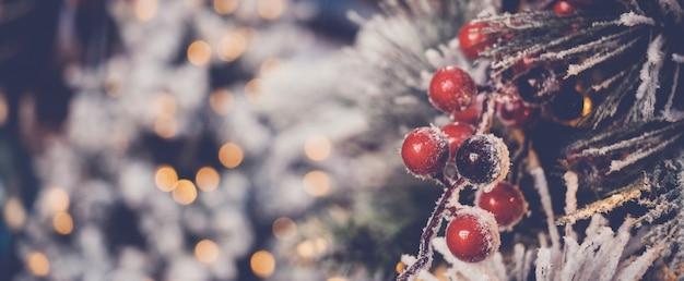 Bagas vermelhas do azevinho e árvore de natal com bokeh desfocado festivo, fundo de férias