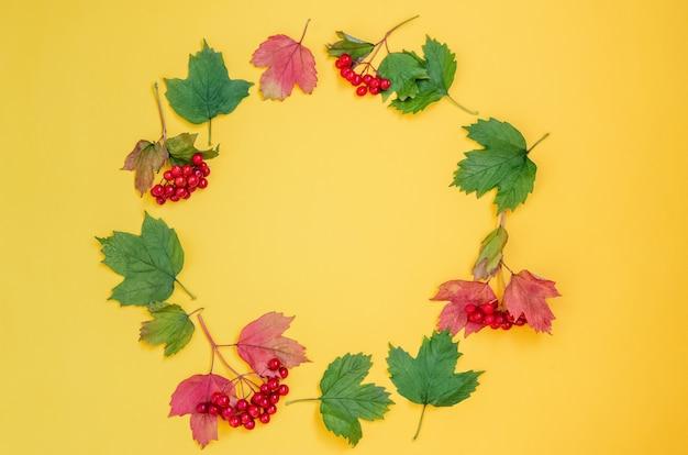 Bagas vermelhas maduras viburnum com folhagem vermelha e verde