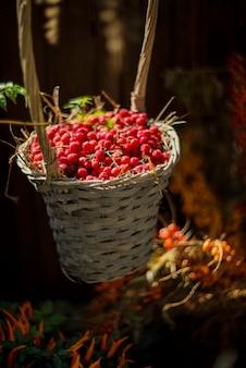 Bagas vermelhas na cesta de palha