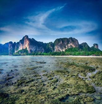 Baía maia phi phi leh ilha tailândia