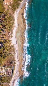 Baía no caribe