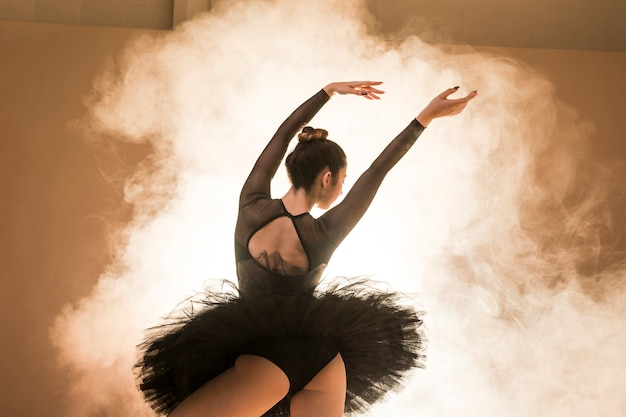 Bailarina de ângulo baixo posando em fumaça