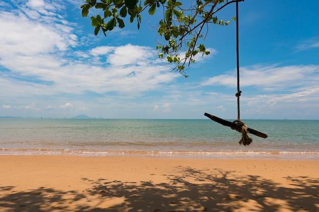 Balance no ramo de árvore pela praia, mar durante a temporada de verão.