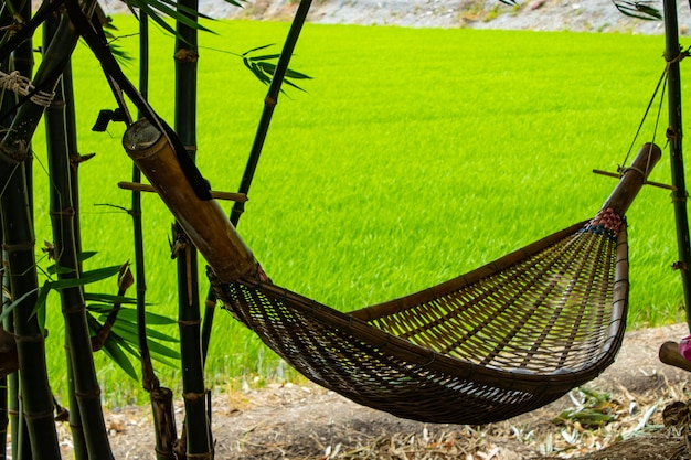 Balanço da rede feito do bambu no jardim.