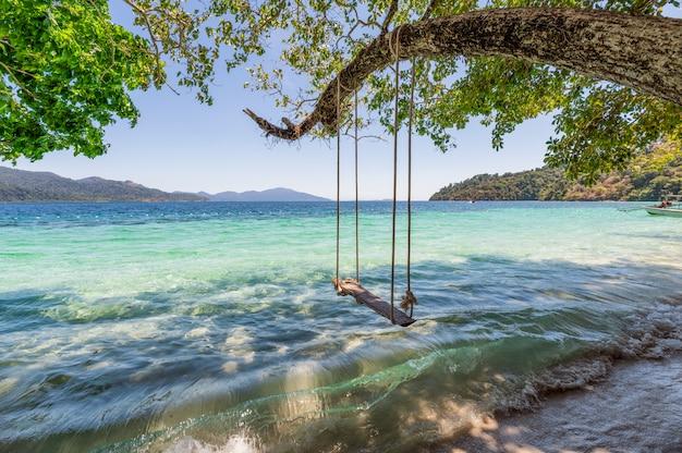 Balanço de madeira na árvore no mar tropical