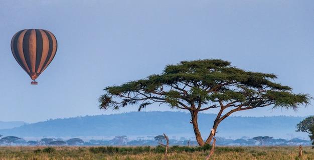 Balão com turistas sobrevoa a savana