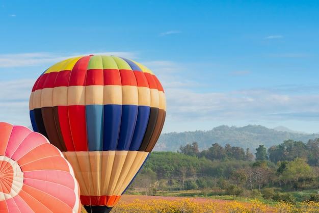 Balão de ar quente colorido voando no parque natural e no jardim. viagem na tailândia e atividade de aventura ao ar livre.