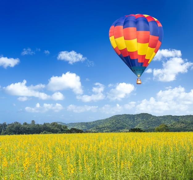 Balão de ar quente sobre campos de flores amarelas com fundo de montanha e céu azul