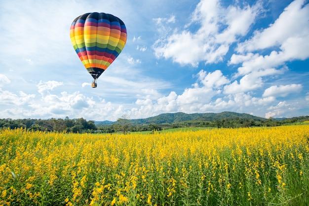 Balão de ar quente sobre campos de flores amarelas contra céu azul