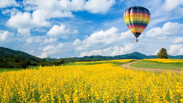 Balão de ar quente sobre campos de flores amarelas contra o céu azul