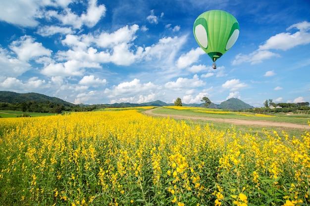Balão de ar quente verde sobre campos de flores amarelas com fundo de céu azul