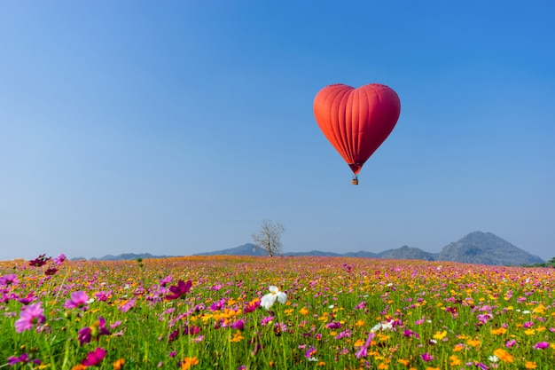 Balão de ar quente vermelho em forma de um coração sobre o campo de flor do cosmos