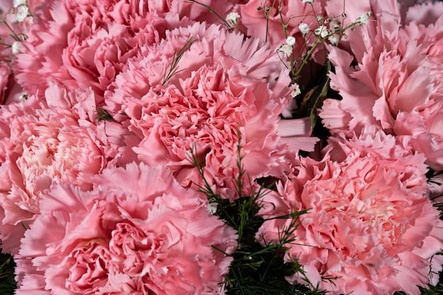 Balde de flores de cravo rosa sobre fundo preto close-up
