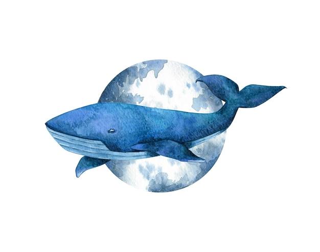 Baleia-azul na frente da composição da lua em fundo branco. ilustração em aquarela para cartão, adesivo, cartaz, design e decoração.