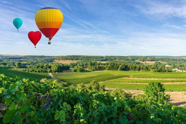 Balões de ar quente voando sobre champanhe vinhas